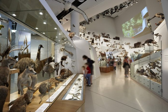 museum unik di Indonesia